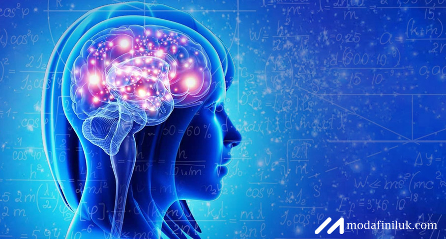 Buy Modafinil to Maintain Heightened Mental Sharpness