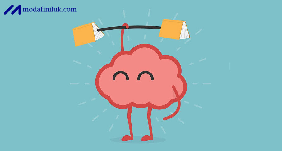 Buy Armodafinil Online for a Brain Boost