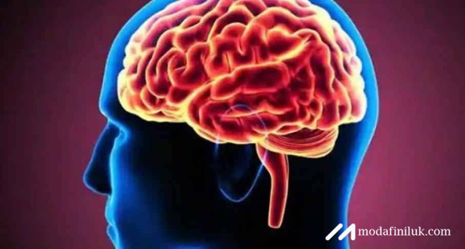 Take Modafinil 200mg Tablets for More Brain-Power
