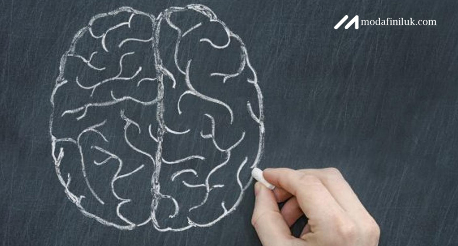 Armodafinil 150mg Tablets for Improved Cognition